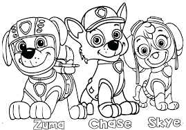Coloring Pages Skye Paw Patrol Coloring Sheets Pages Best For Kids