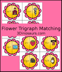 3 Dinosaurs Flower Trigraph Matching