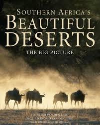 southern africa s beautiful deserts the big picture heinrich van den berg