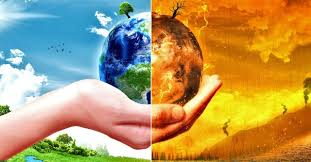 climate change essay role of government to combat climate change climate change essay