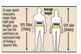 Why Waist Circumference And Waist To Height Ratio Is So