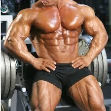 Progresele in masa musculara