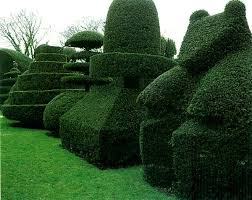 15 Ways to Trim a Hedge in Your Yard