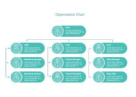 Business Org Chart Template Cacoo