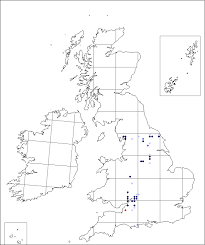 Carex digitata | Online Atlas of the British and Irish Flora