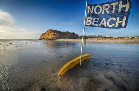 Image result for san diego beaches
