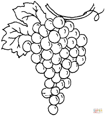 Small Picture Grapes coloring pages Free Coloring Pages
