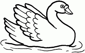 Small Picture Swans Coloring Pages Free For Swan diaetme