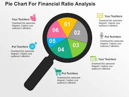 Pie Chart For Financial Ratio Analysis Powerpoint Template