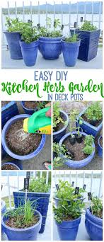 patio herb garden planters lovely 144 best growing herbs in