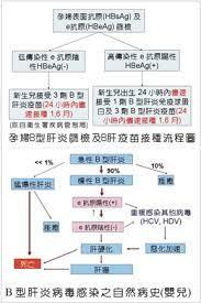 B 型 肝炎 予防 接種