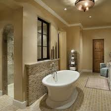 Bath Photos Walk Through Shower Design, Pictures, Remodel, Decor and Ideas  - page