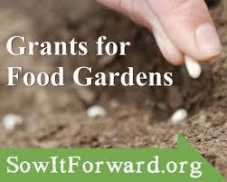 the sow it forward garden grants program kitchen gardeners international get your in