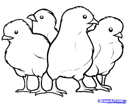 Small Picture Baby Chick Coloring Pages GetColoringPagescom