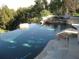 infinity pool backyard. Modren Backyard Brent Needs To Get Busy Forget The Landscape Around Above Ground This  Is More Like It For Infinity Pool Backyard 2