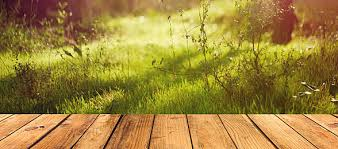 outdoor woods backgrounds. Fresh Outdoor Windowsill Display, Board, Wood, Wooden Tables, Background Image Woods Backgrounds O