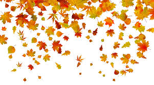 Image result for free clipart fall leaves