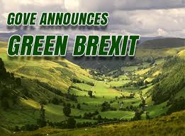 Image result for green brexit images
