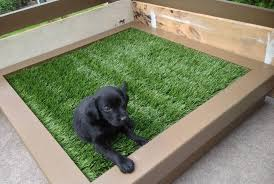dog potty area for patio how to build an outdoor dog potty area patio potty sg2016