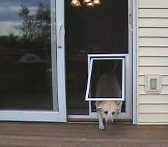 security boss pet screen door for benji patio screen dog door