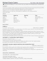 24 Asp Net Developer Resume Professional Template Best Resume