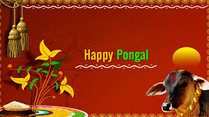 Tamil Pongal Hd Images Free Download ...