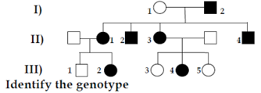 Polydactyly Pedigree Chart Study The Given Pedigree Chart Which Can Be Pol Aspirebuzz