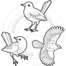 Small Picture Magpie Birds Outline Vector Illustration by Lal Perera Toon