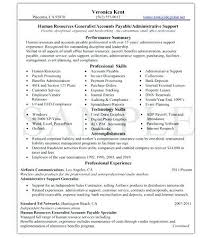 professional resume writing services toronto knock em dead service package