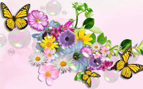 colorful butterfly wallpapers.  Colorful Wallpapers ID701299 On Colorful Butterfly S