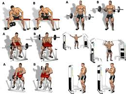Biceps Exercise Chart 10 The Rock Arms Workout Routine How Dwayne Johnson Gets