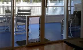 choosing between maxseal in glass pet doors