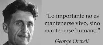 O atemporal      de George Orwell     AMBROSIA Not  cias Agr  colas