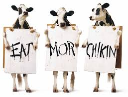 Image result for Cow picture
