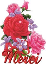 instant fleurit  Images?q=tbn:ANd9GcQ53FrwX99lnevyZ3QGddmXvW06nj5IXV6i9Cx6tZePY0qRUaHDHw