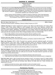 Professional Resume Help Resume Cover Letter Template