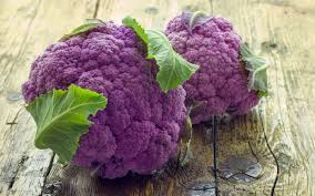 Image result for purple vegetables