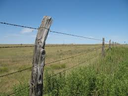 barbed wire fences.  Fences Picture In Barbed Wire Fences B