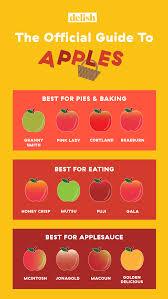 The Apple Picking Explainer Your Inner Basic B Tch