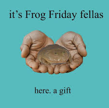 it is friday! woohoo! have a great weekend!   Cute frogs, Frog pictures,  Frog