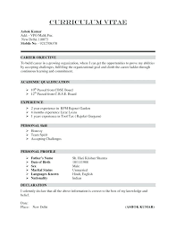 Career Objective On Resume Template Custom Resume Curriculum Vitae Format Curriculum Vitae Format Examples
