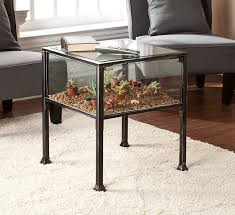 Amazon.com: Terrarium Display End Table with Silver Distressing in Black:  Kitchen & Dining
