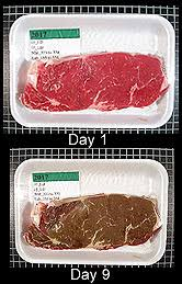 Steak Color Chart Technology Enhanced To Evaluate Tenderness And Color