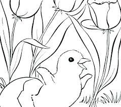 Coloring Pages Free Spring Coloring Pages To Print Free Spring