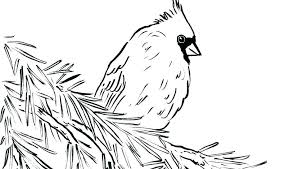 Bird Coloring Pages For Preschoolers Bird Coloring Pages Printable