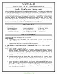 Complex Insurance Account Manager Resume Sample Example Project