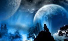 howling wolf wallpaper.  Wolf Howling Wolf Wallpapers Background For Desktop Wallpaper 1366 X 768 Px  31523 KB White Desktop Iphone Moon Savage Black On O