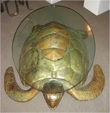 turtle coffee table choice image design ideas sea book