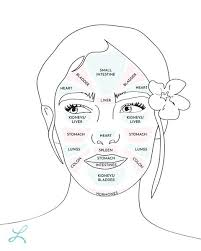 Skin Analysis Chart Face Mapping How Face Mapping Can Help To Bring Balance And