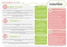 The Weaning Plan Babymoov
